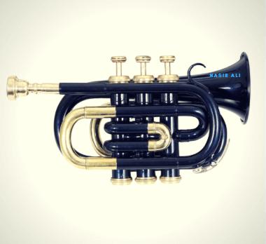 Nasir Ali Trumpet