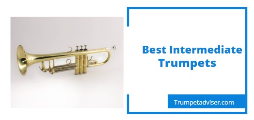 Best Intermediate Trumpets